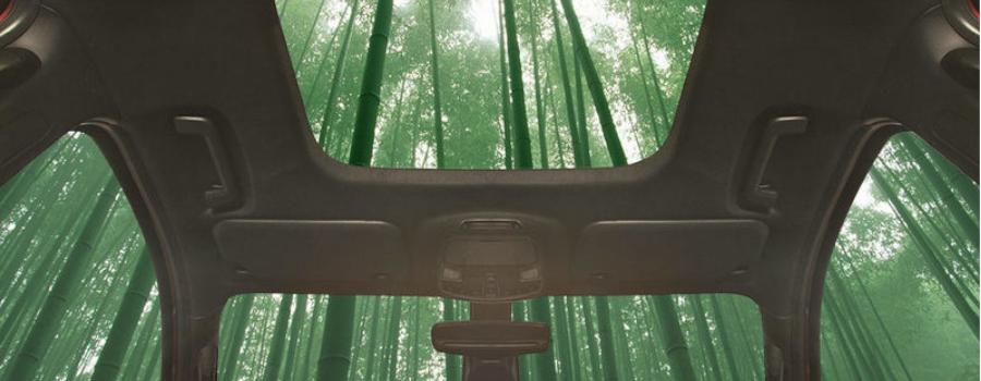 Poniendo un poco «verde» a tu coche (en el buen sentido)