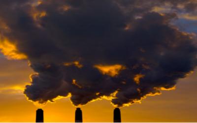 Living between dioxins and furans