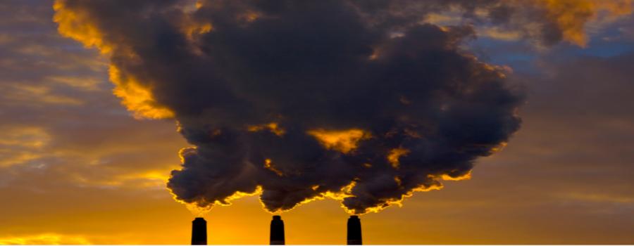 Viviendo entre dioxinas y furanos