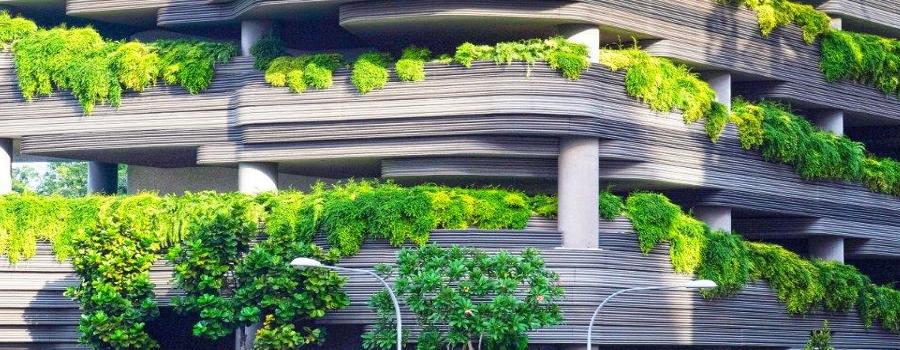 La re-naturalización de nuestras ciudades